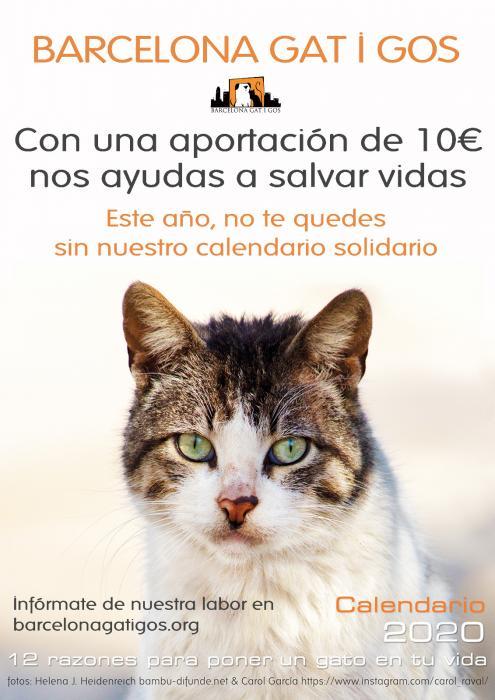 Calendario Solidario Gatuno para el 2020
